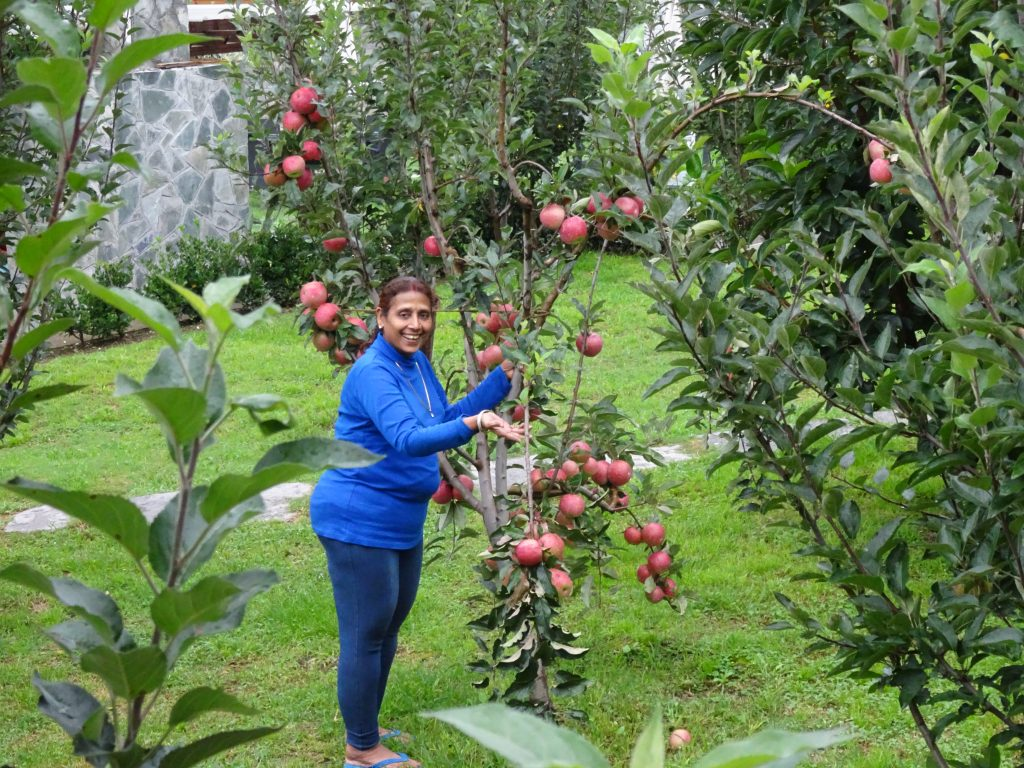 Larisa Resort - Apple Garden