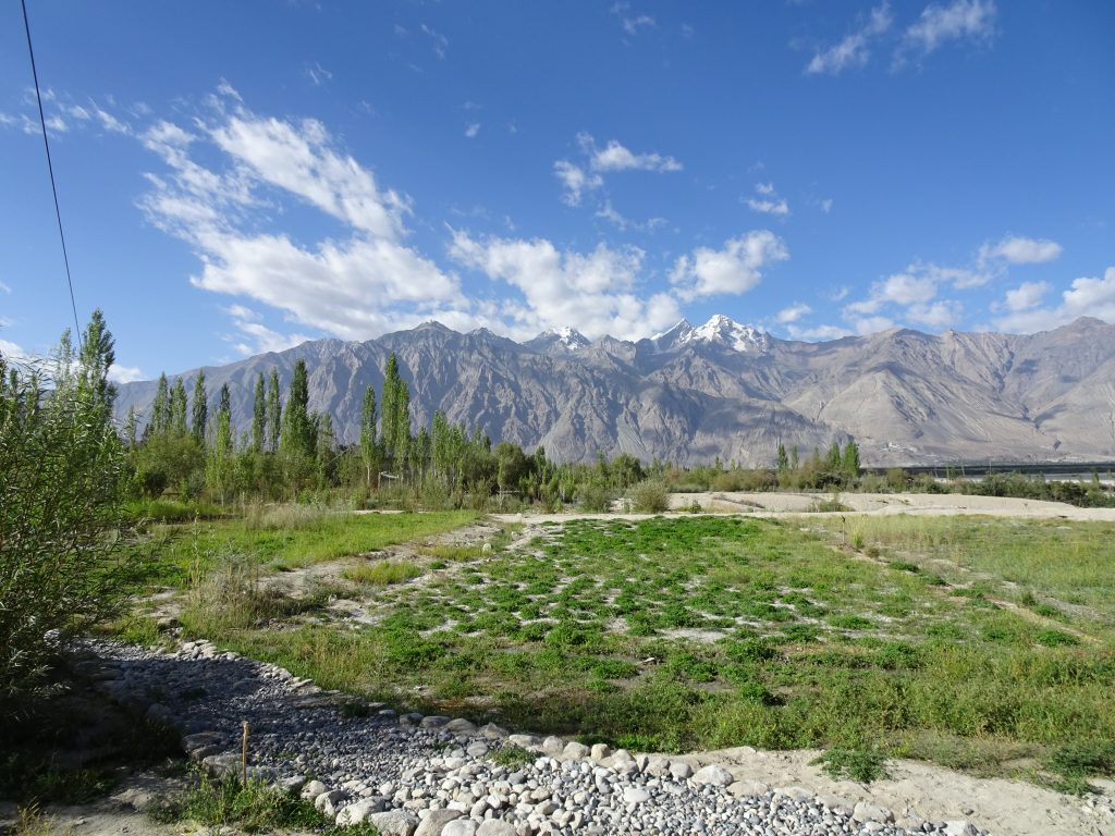 Nubra Eco-Lodge - Path to the room