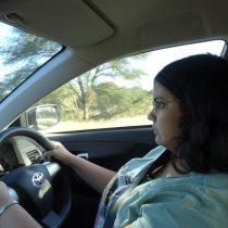 Driving in Kruger