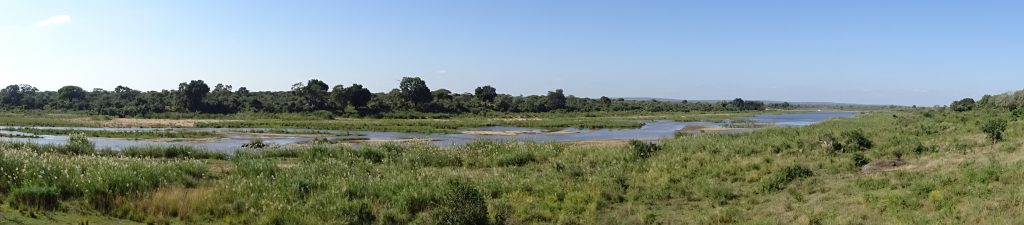 Panoramic View of Kruger