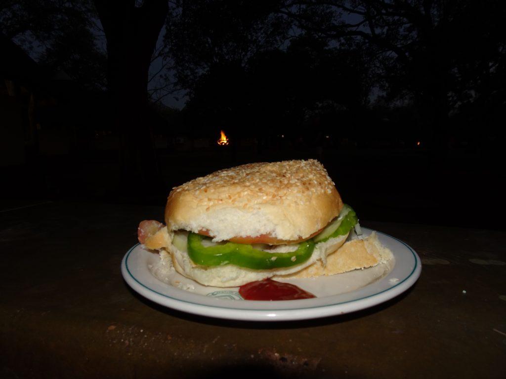 Sandwich at Satara