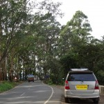 Kodaikanal, Ooty and Bandipur: Trip Planning