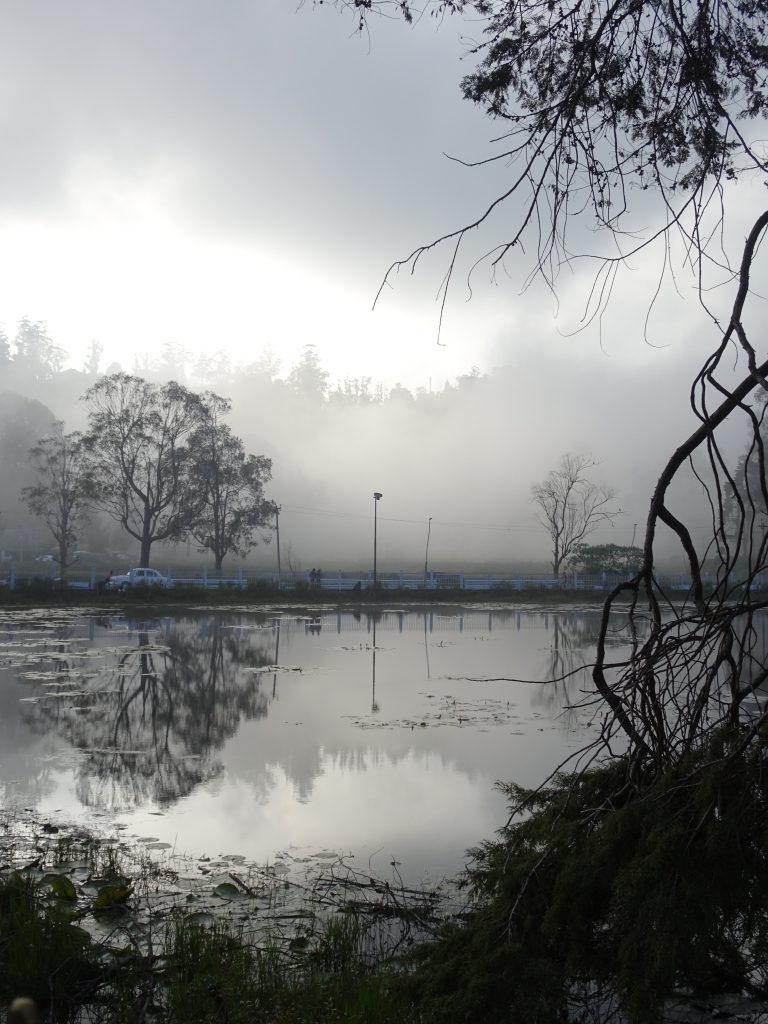 Kodaikanal Lake - Perfect reflection
