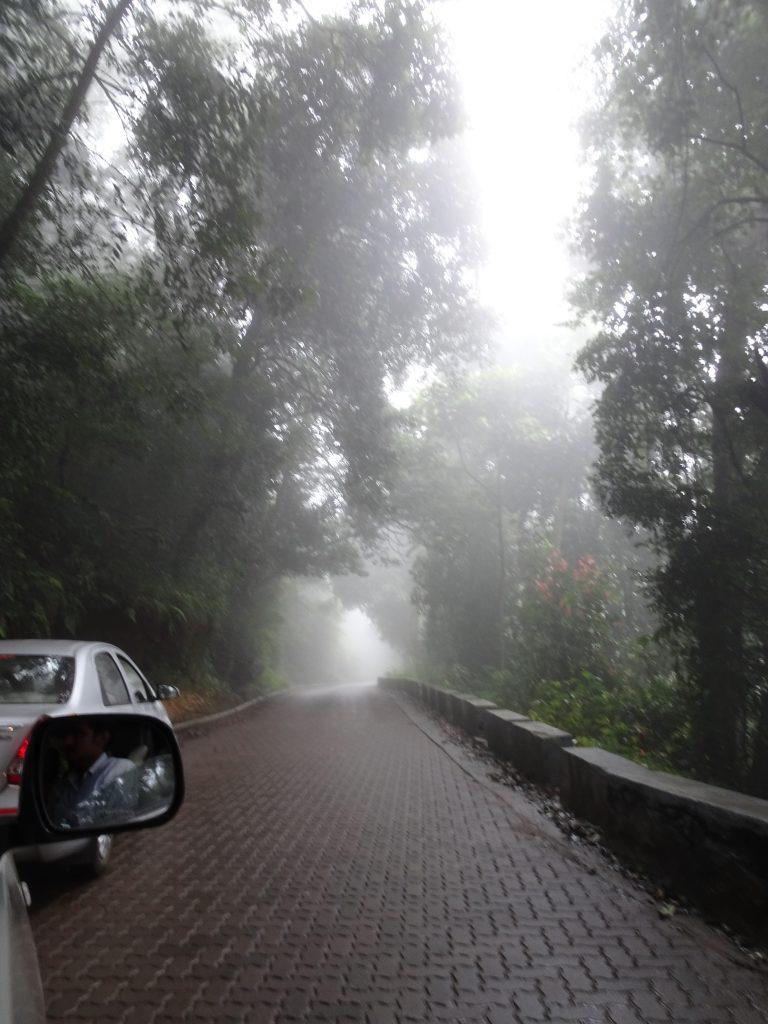 Fog in Coonoor