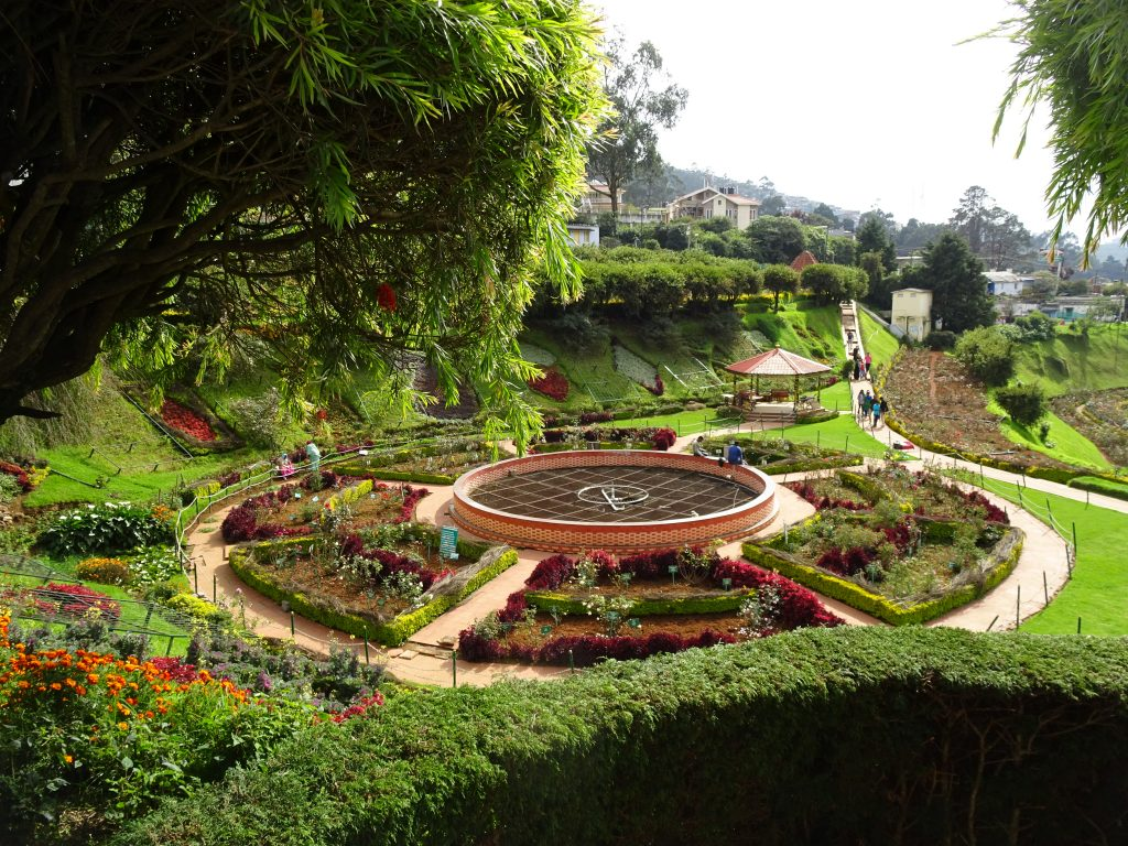 Rose Garden in Ooty