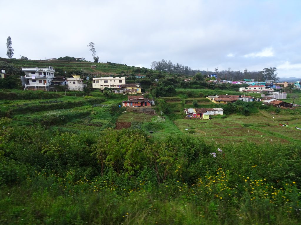 View from Toy Train in Ooty