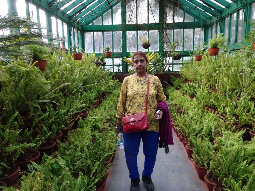 Green House in Botanical Garden, Ooty