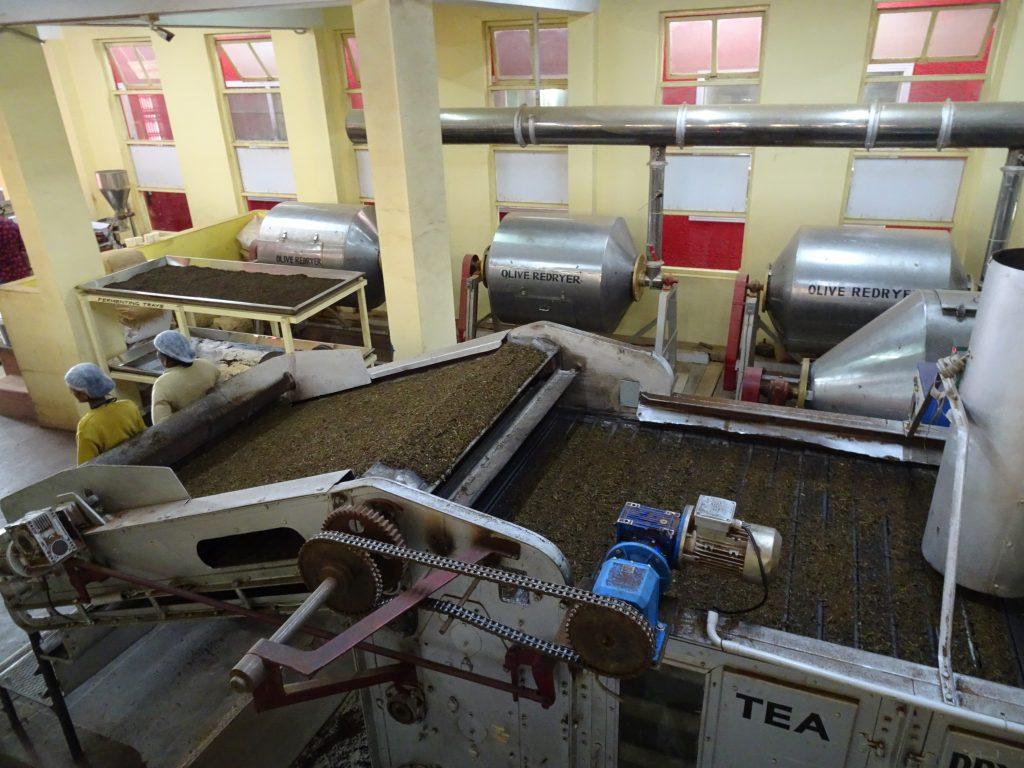 Inside Doddabetta Tea Museum