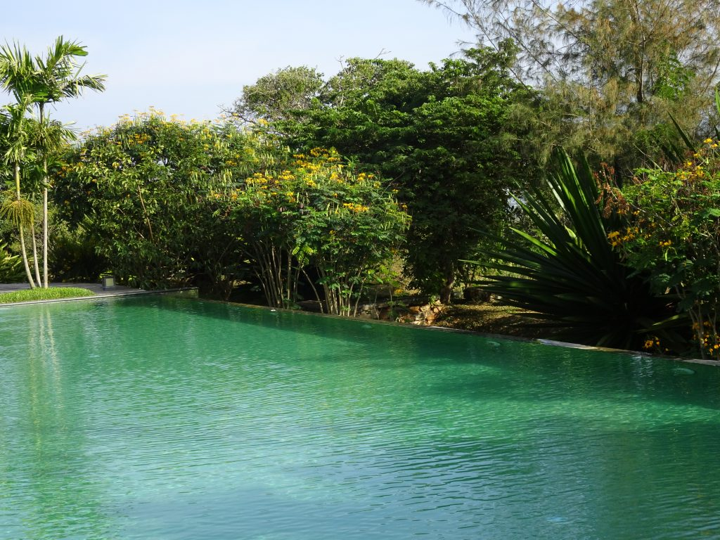 Swimming Pool at Serai Bandipur
