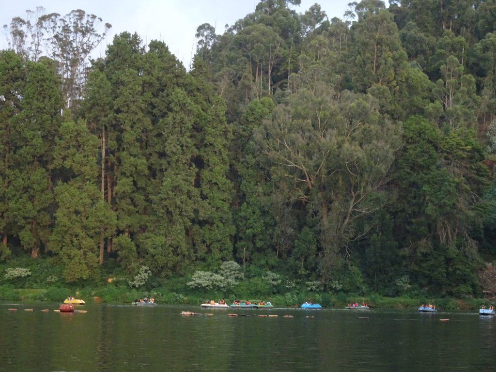 Views from Boating, Ooty