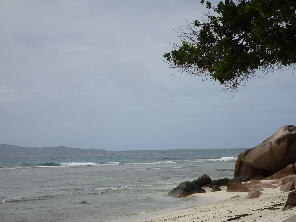 Beauty of La Digue