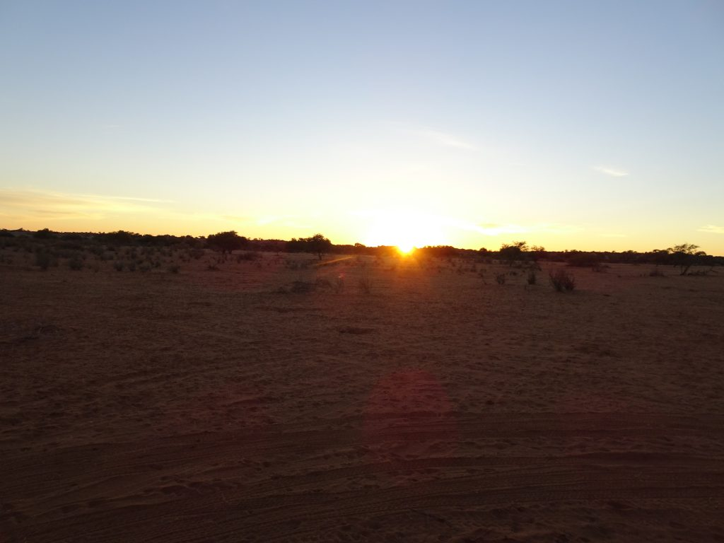 Kalahari Sunrise