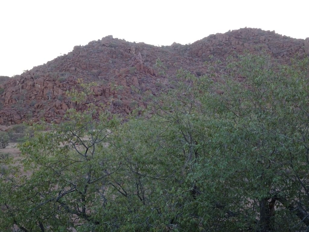 View from the Room at Mowani Mountain Camp
